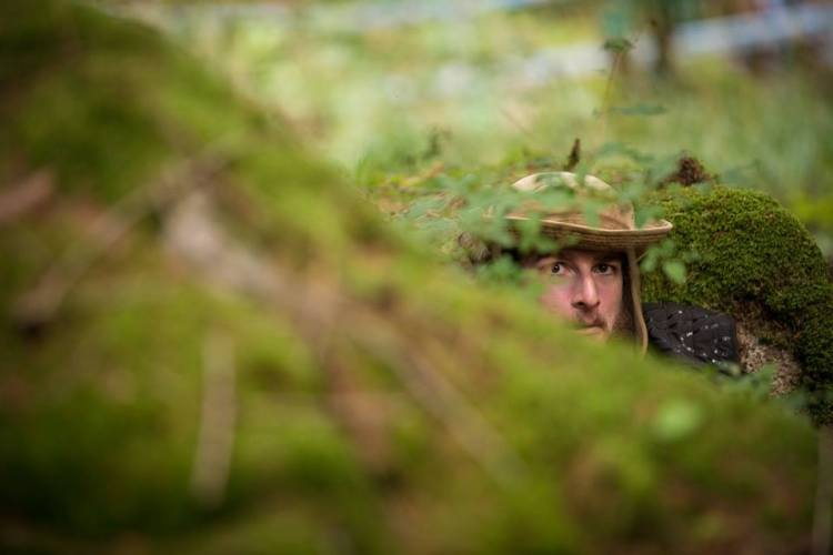 Lurking in the undergrowth... PC: @beatricewhatever