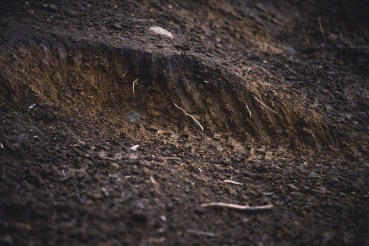 When the best of the best are all riding the same track, there isn't much mystery about where the fast lines are, so you get some interesting ruts and huge holes forming from all of the consisten abuse.